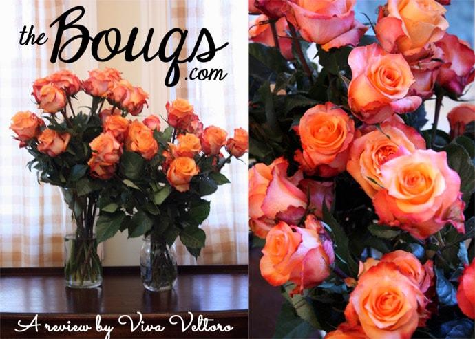 A Review of The Bouqs: Flowers from a Volcano - Viva Veltoro