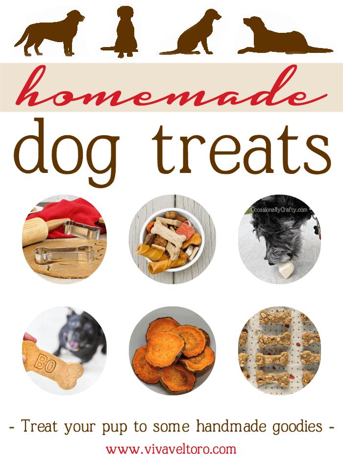 DIY Homemade Dog Treats! - Viva Veltoro